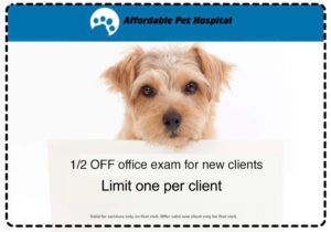 Affordable-Pet-Hospital