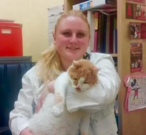 tanya ruisi veterinarian affordable pet hospital cat